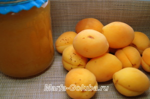 пастила из абрикосов 11