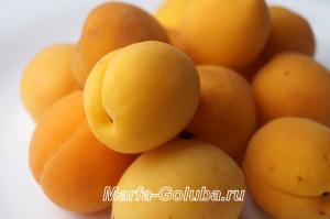 пастила из абрикосов 6